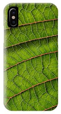 Poinsettia Leaf II IPhone Case