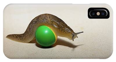 IPhone Case featuring the photograph Slug On The Ball by Michael Goyberg