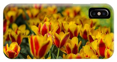 IPhone Case featuring the photograph Spring Mood by Michael Goyberg