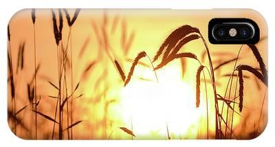 Sunset Rye IIi IPhone Case