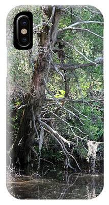 Swamp Tree IPhone Case