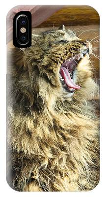 IPhone Case featuring the photograph The Cat Who Loves To Sing by Michael Goyberg