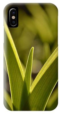 Variegated Light 1 IPhone Case