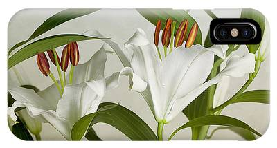 Day Lily Phone Cases