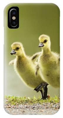 Geese Phone Cases
