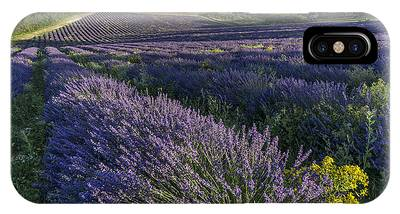 IPhone Case featuring the photograph Lavender Field Provence  by Juergen Held