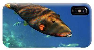 IPhone Case featuring the photograph Maldives by Juergen Held