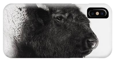Bison Phone Cases