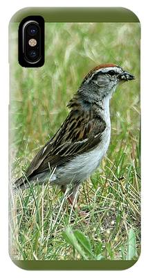 IPhone Case featuring the photograph One Less Insect by Sally Sperry