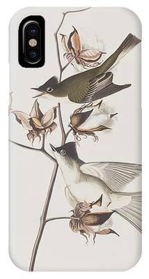 Flycatcher iPhone Cases
