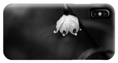 Spring Snowflake IPhone Case