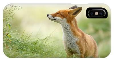 Wild Animal Phone Cases