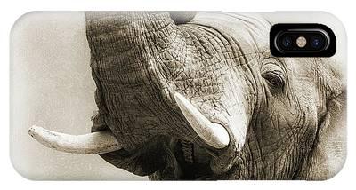 Baby Elephant Phone Cases