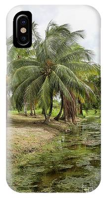 Restored Plantation iPhone Cases