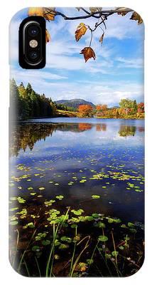 Autumn Pond Phone Cases