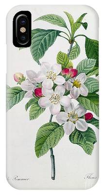 Cut Flowers Phone Cases