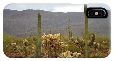 Arizona's Sonoran Desert  IPhone Case