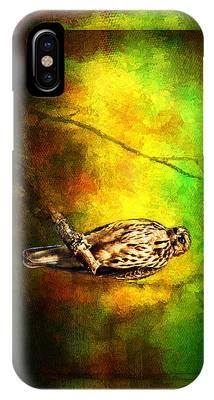 Hawk On Branch IPhone Case
