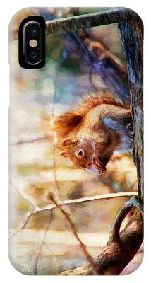 Red Squirrel With Pinecone IPhone Case