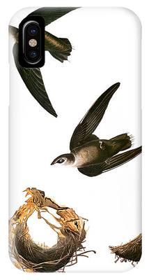 Chimney Swift Phone Cases
