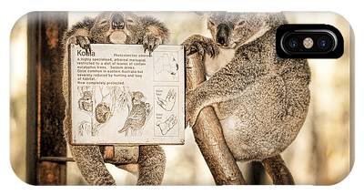 IPhone Case featuring the photograph Koala Australia  by Juergen Held