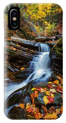 Fall Foliage New York Phone Cases