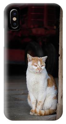 IPhone Case featuring the photograph Barn Cat And Tractor by Dennis Dame
