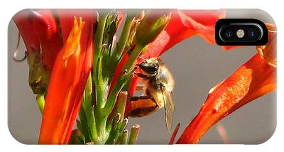 Day In A Life Of A Bee IPhone Case