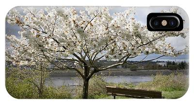IPhone Case featuring the photograph Bench And Blossoms by Patricia Strand