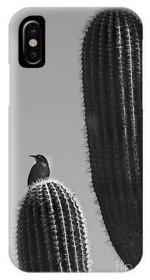Bird On Cactus IPhone Case by Richard J Thompson