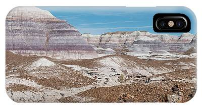 Petrified Forest Phone Cases