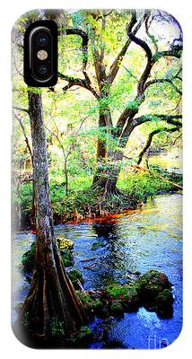 Blues In Florida Swamp IPhone Case