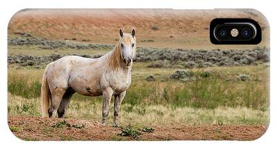 IPhone Case featuring the photograph Boreal by Ronnie and Frances Howard