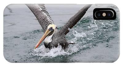 Brown Pelican Landing On Water . 7d8372 IPhone Case