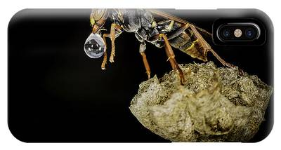 IPhone Case featuring the photograph Bubble Blowing Wasp by Chris Cousins