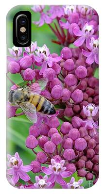 Showy Milkweed Phone Cases