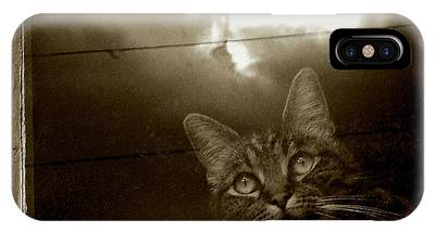 IPhone Case featuring the photograph Cat In The Window by Patricia Strand