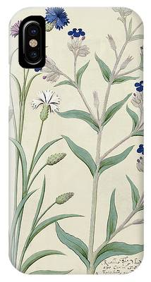 Centaurea Montana Phone Cases