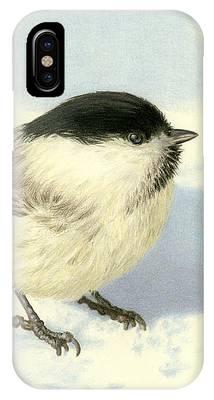 Winter Birds Phone Cases
