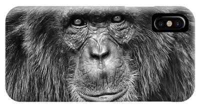 Ape Phone Cases