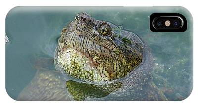IPhone Case featuring the photograph Close Up Of A Snapping Turtle by Sally Sperry