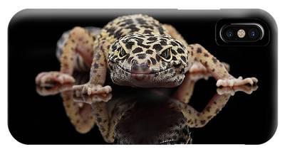Reptiles Phone Cases
