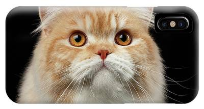 Persian Cat Phone Cases