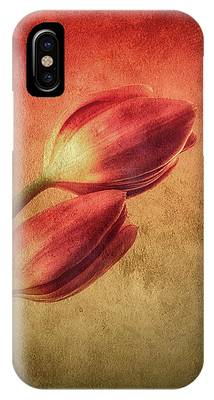 Colorful Tulips Textured IPhone Case