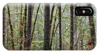 Comox Valley Forest-1 IPhone Case