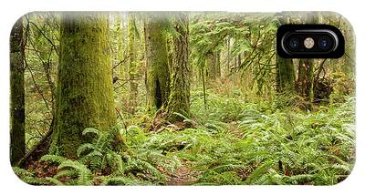 Comox Valley Forrest-5 IPhone Case