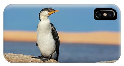 IPhone Case featuring the photograph Cormorant by Chris Cousins