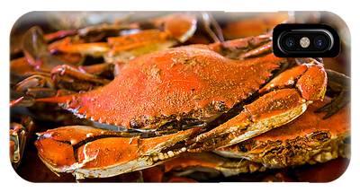 Crab Boil IPhone Case