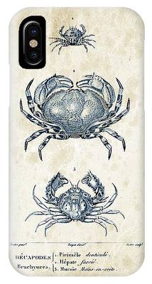 Fresh Shrimp Phone Cases