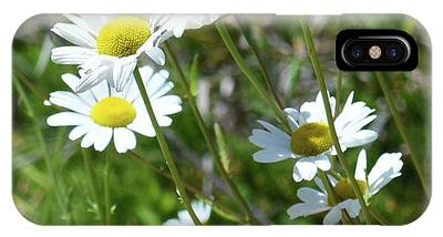 IPhone Case featuring the photograph Daisies Popping Up Everywhere by Sally Sperry
